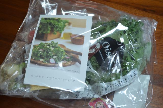 [kit]たっぷりケールのチーズナッツサラダ1セット 袋