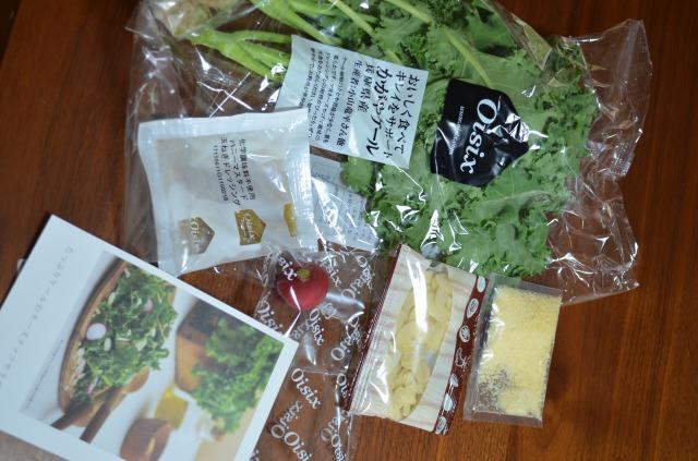 [kit]たっぷりケールのチーズナッツサラダ1セット 出したところ