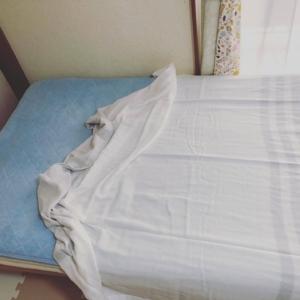 西川 やわらかガーゼケット ベッドの上